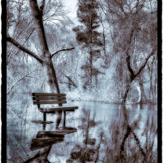 The Bench- Duotone over Silver