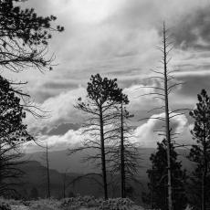 Bryce Canyon, Utah, Donald P. Johnson