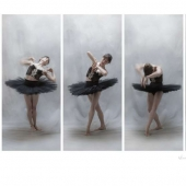 Eric Hovermale - Dance Memory -- Black Tutu