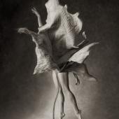 Myths, Untitled 11