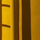 Color, line, texture, shape