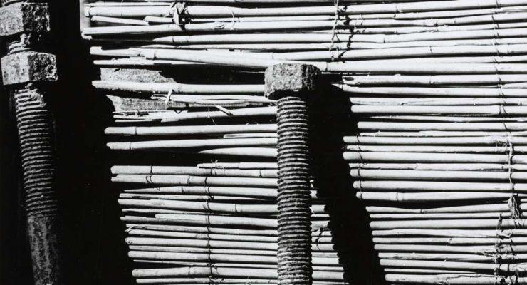 Agains A Fence - John deMelim